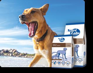 Für Hunde - Diätfuttermittel
