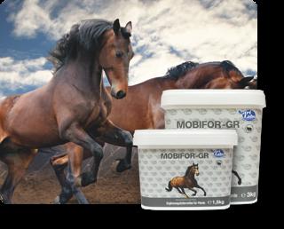 Für Pferde - Nahrungsergänzung
