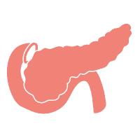 Pankreaspulver