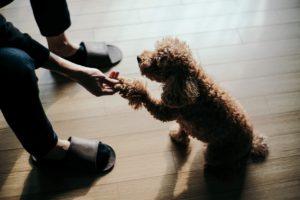 Let's Play – Indoor Aktivitäten