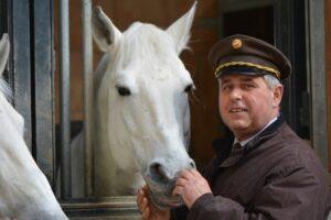 Der Stallmeister über windempfindliche Pferde