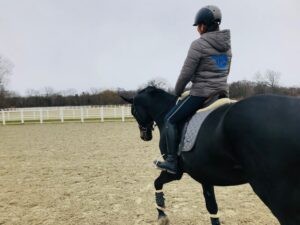 Alleinsein mit dem Pferd