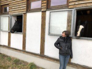 Wunschliste für das gute Pferdeleben